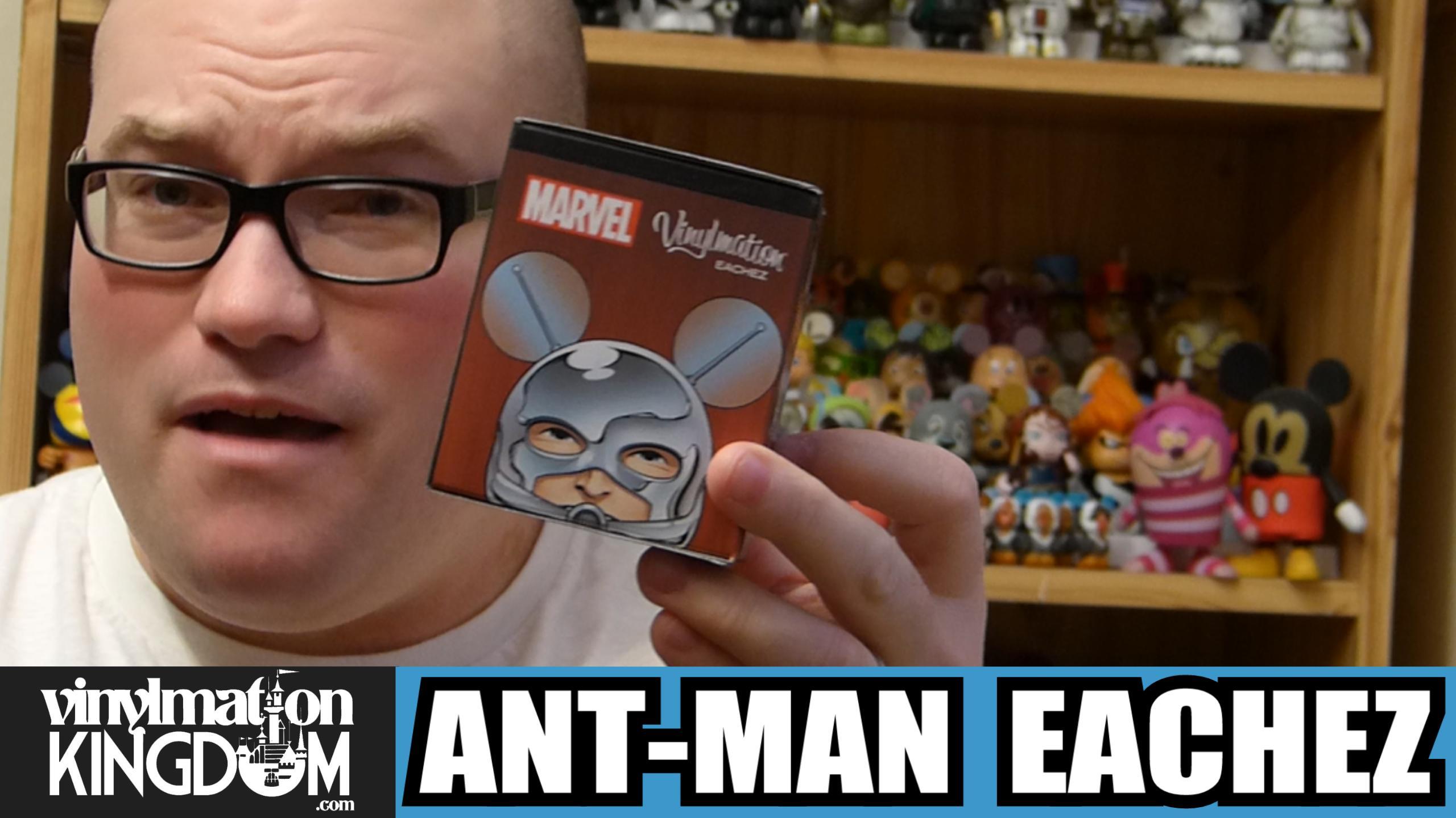 Ant Man Eachez Vinylmation Unboxing