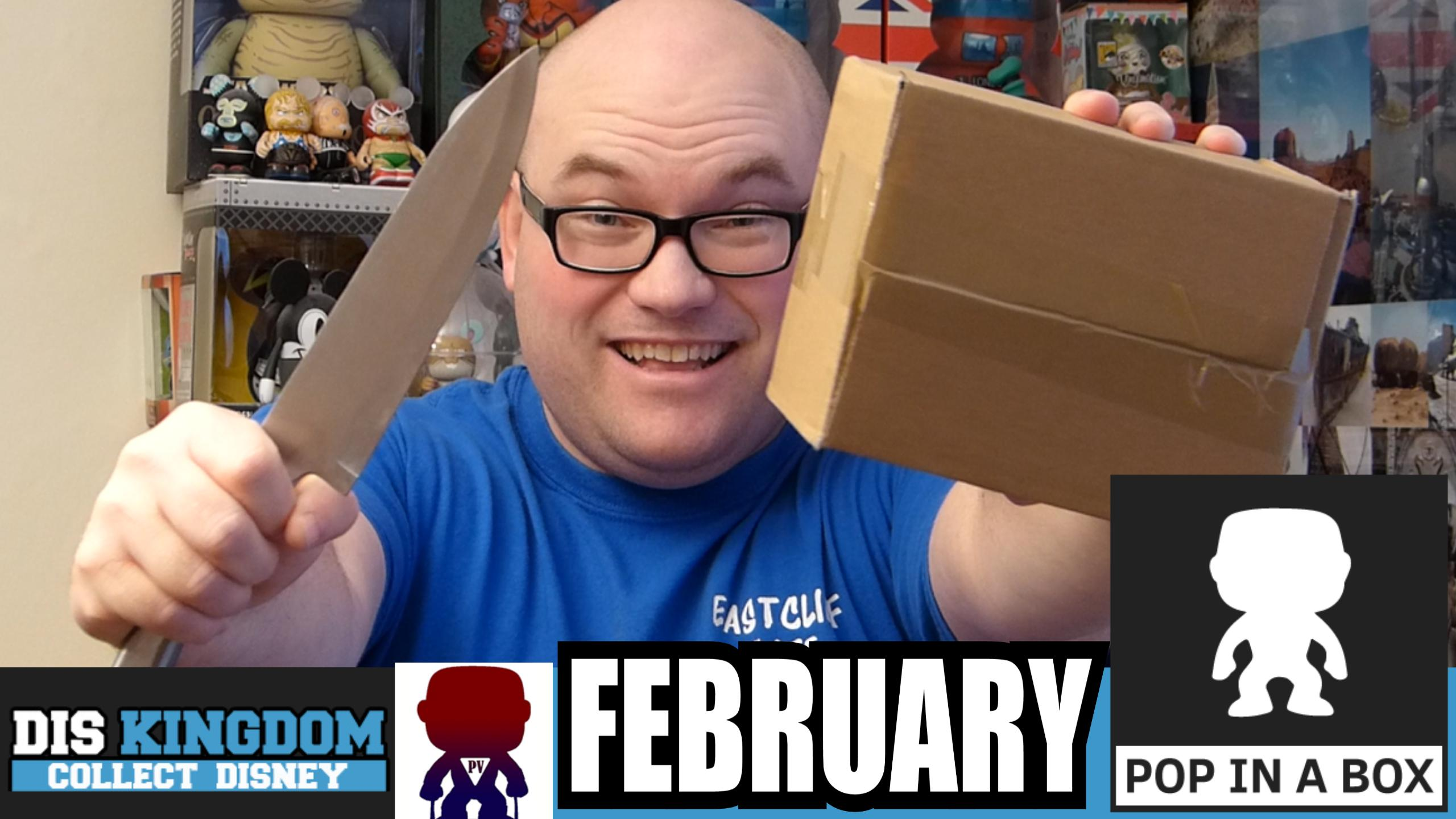 Pop In A Box Unboxing February 2015