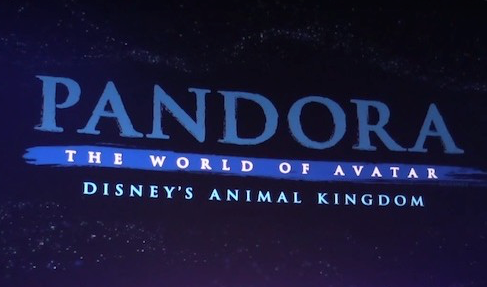 """""""It's in the Details"""" Pandora – The World of AVATAR at Disney Animal Kingdom"""