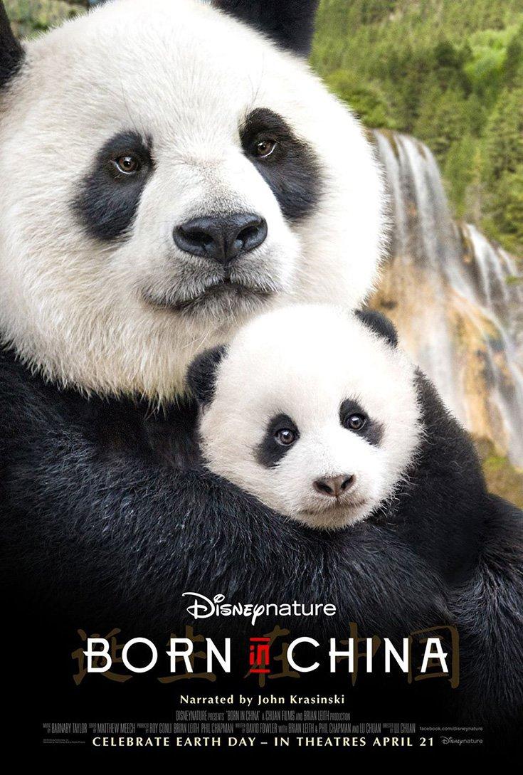 DisneyNature's Born In China Celebrate National Panda Day