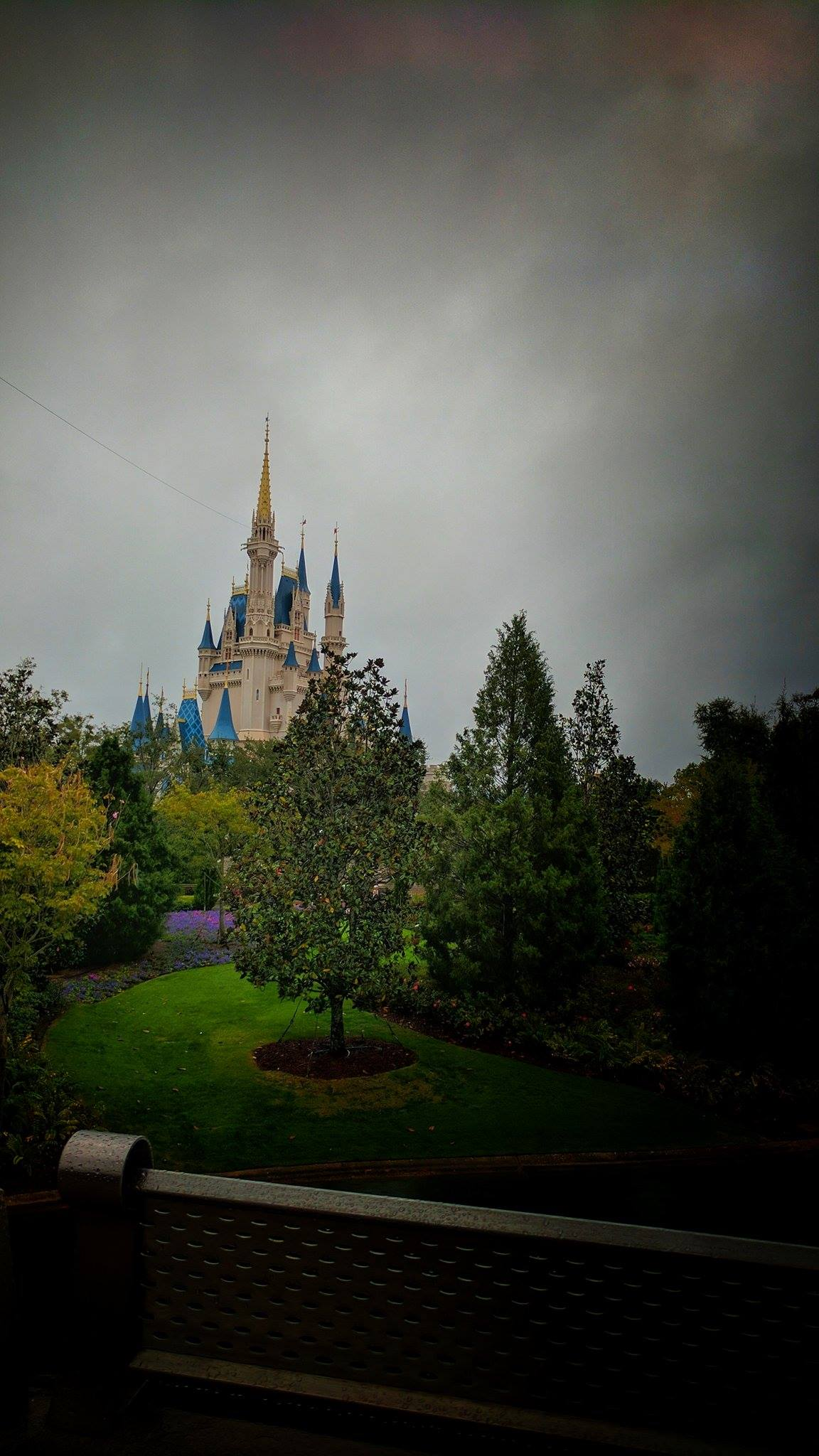 Vacation Kingdom Know How: Rainy Days at WDW