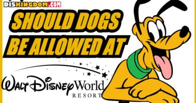 Should Dogs Be Allowed To Stay At Walt Disney World Hotels?