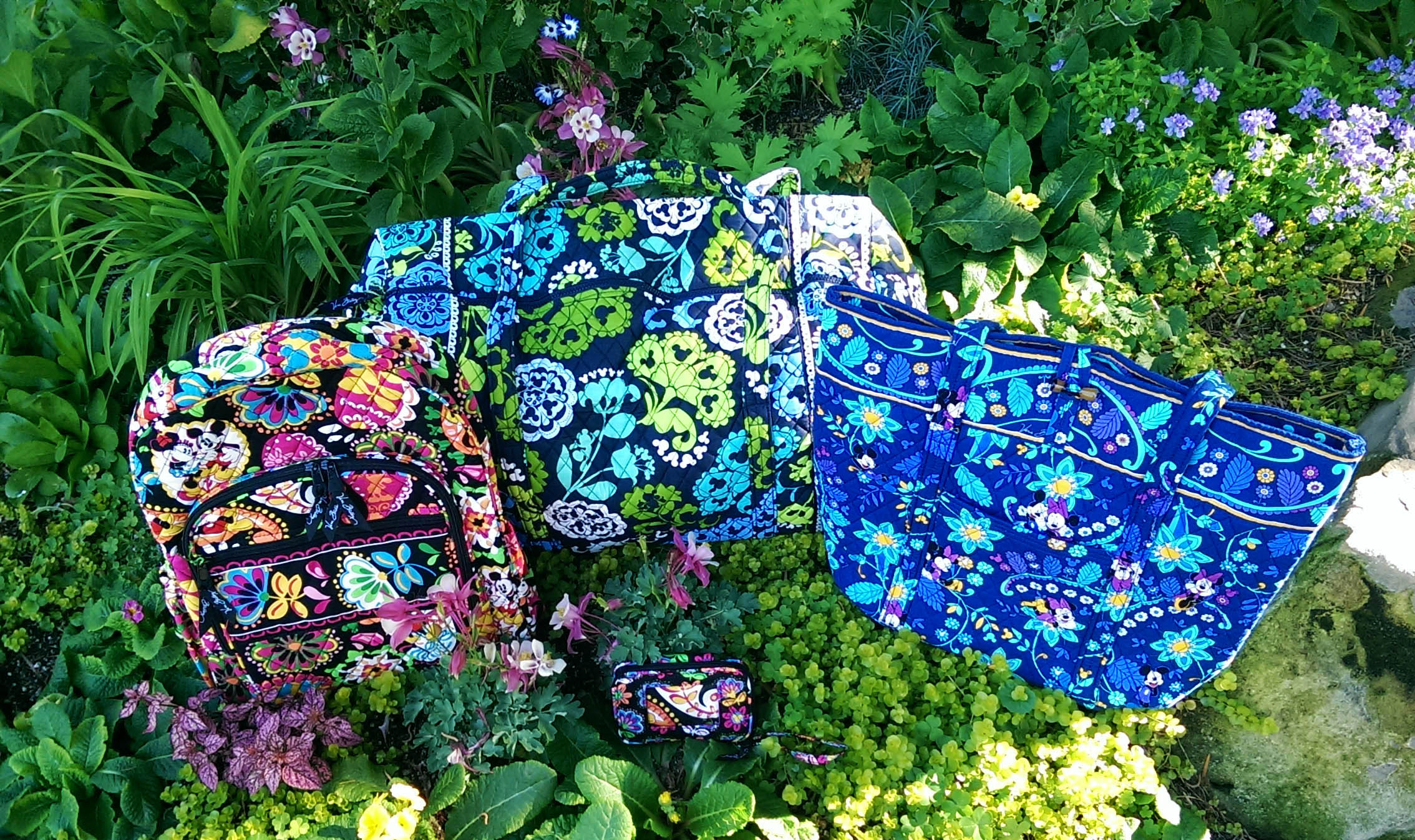 6823e4b3665f The Vera Bradley Collection at the Disneyland® Resort